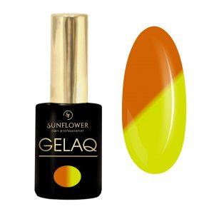 GelaQ-005-thermo-sun-flower1