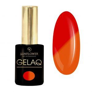 GelaQ-009-thermo-sun-flower1